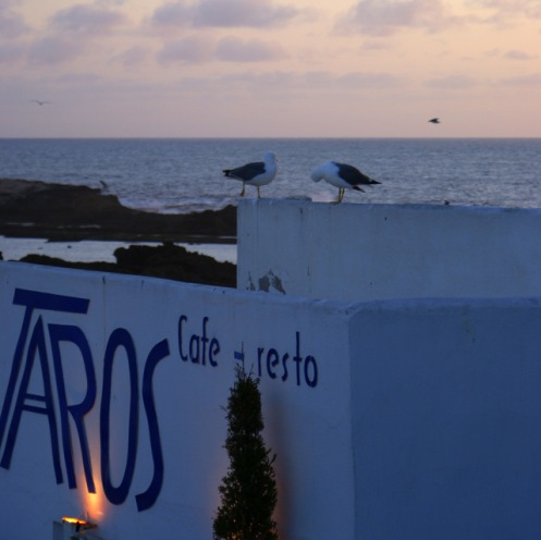 Taros Restaurant Essaouira